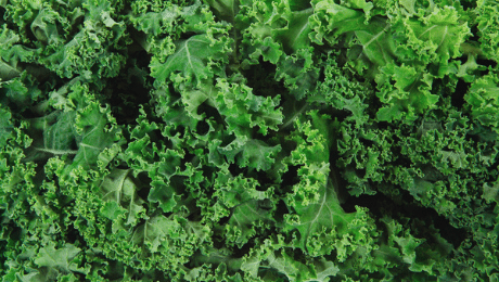 Ce que vous ne saviez pas sur le chou kale: 5 anecdotes
