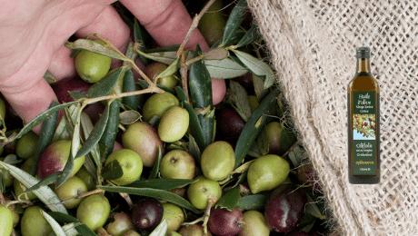 Epikouros : la meilleure huile d'olive extra vierge du monde