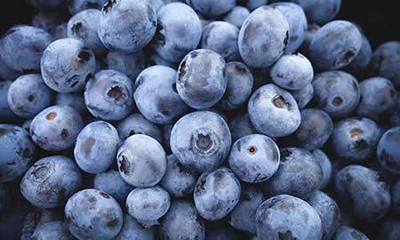 Blauwe bessen, niet alleen populair maar ook gezond