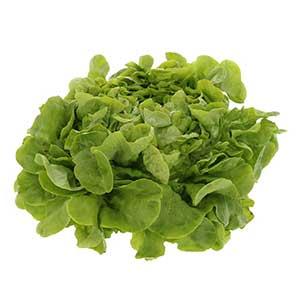 Légumes feuilles et légumes tiges