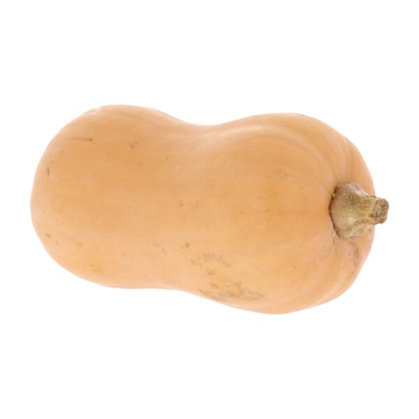 Courge butternut (+/- 1 kg)