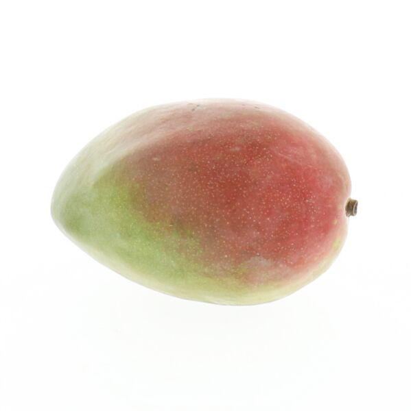 Mangue (+/- 0,600 kg)